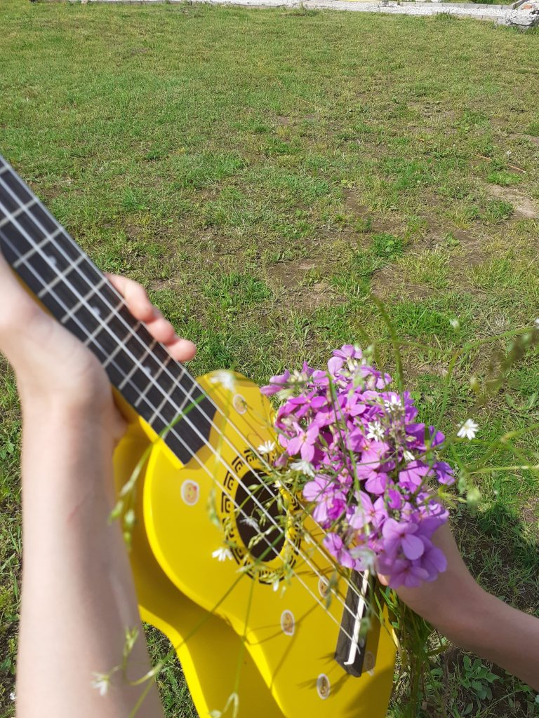 Мой любимый инструмент укулеле